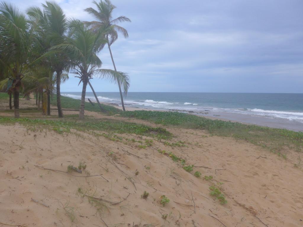 PLAGE DE BAHIA