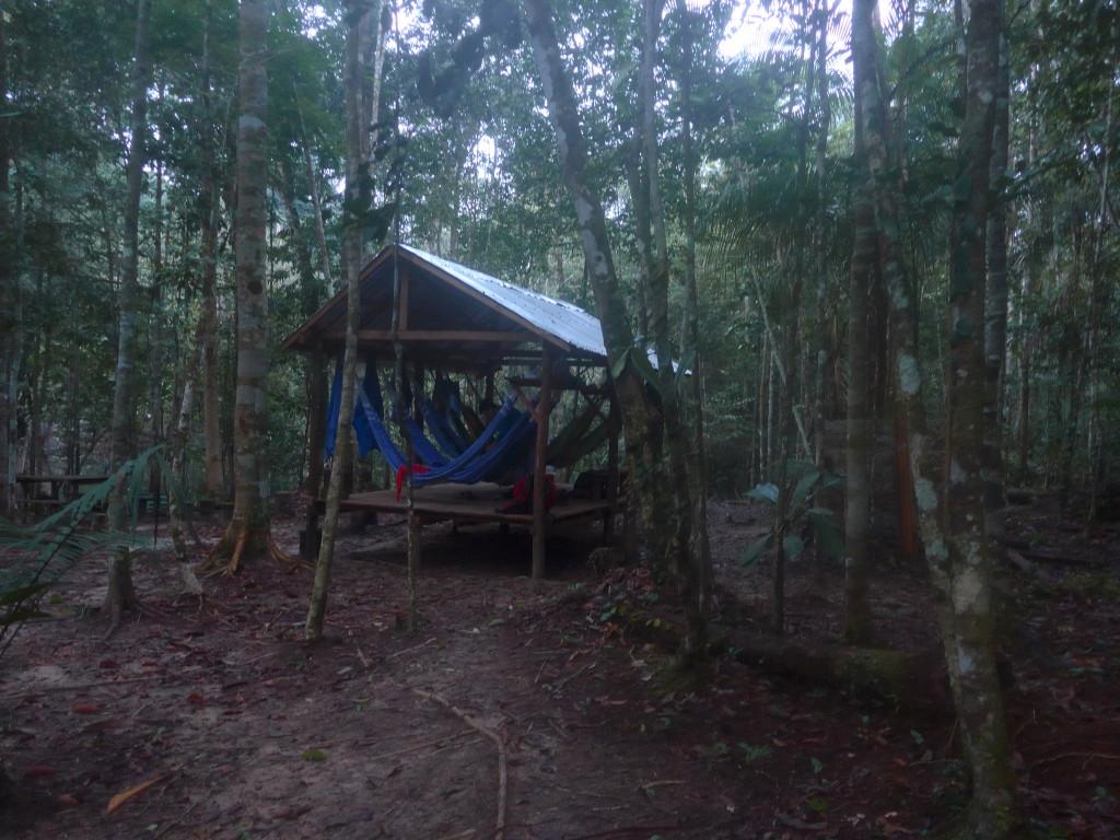 NUIT EN FORÊT AMAZONIENNE